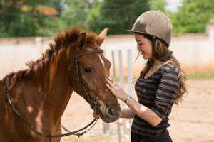 treat a pony